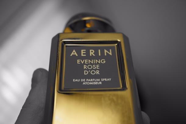 Aerin3